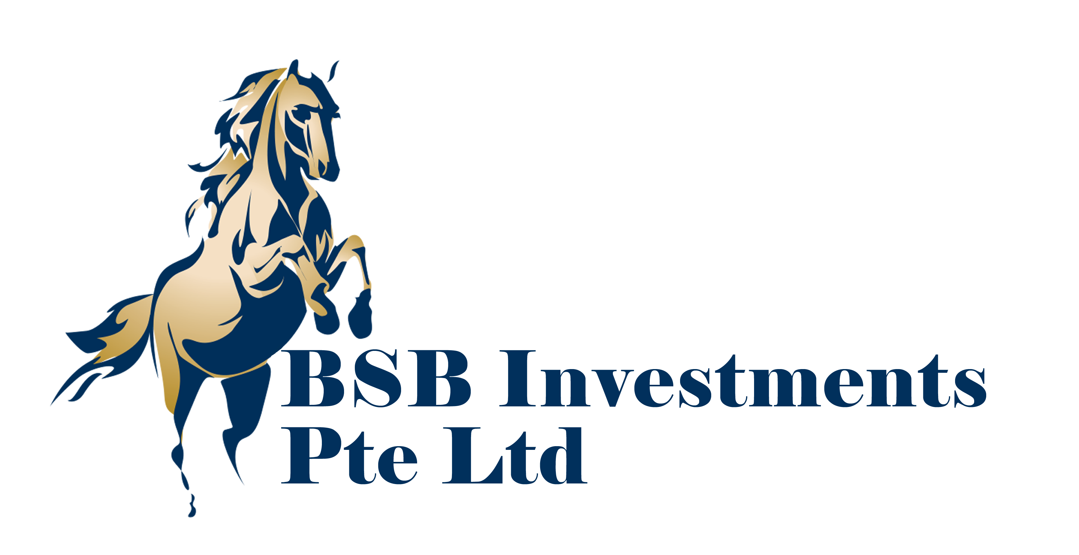 BSB Investments